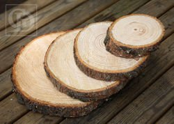 Slice of spruce wood D 15-20 cm T 2-4cm