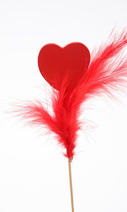 Wooden heart with feather