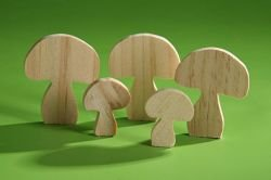 Wooden mushrooms 12 pcs/pkg