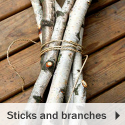 Sticks and branches