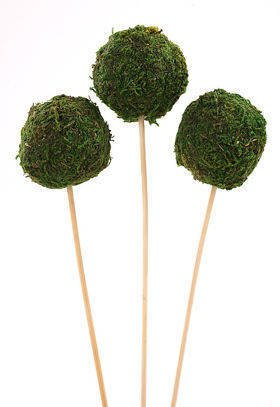 Set od 3 Moss balls (5cm) on a stick