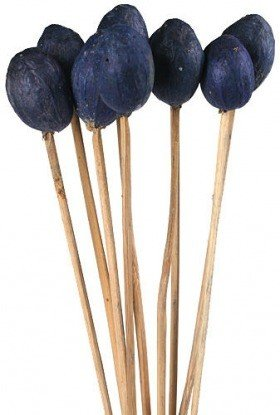 Amra on stick, 10 pcs/pkg - navy blue