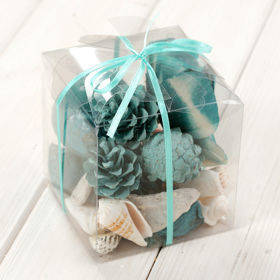Arrangement of dried fruits and sea shells 10/10 cm - sky-blue/white