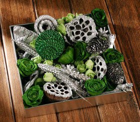 Arrangement of dried plants 25-30 cm GREEN