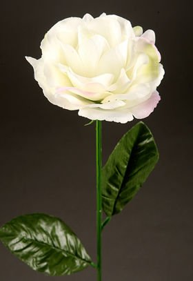 Artificial flower Rose on the branch -cream