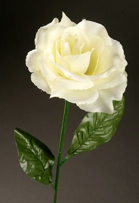 Artificial flower Rose on the branch - cream-green