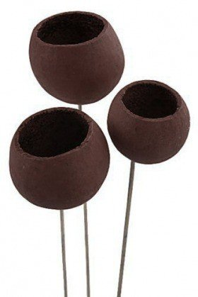 Bell cup on stick 12 pcs/pkg, brown