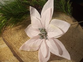 Bethlehem star pink poinsettia on a wooden peak 12/22 cm