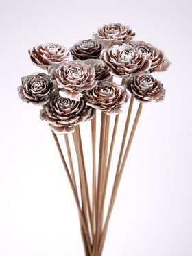 Bouquet of 6 Cedar Wood Roses Floral Picks White