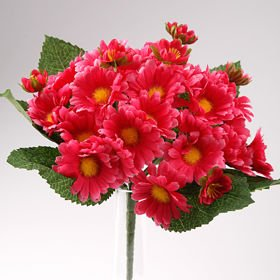 Bouquet of orange oxeye daisies - ca. 24 flowers 40 cm