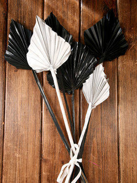 Bunch of dry palm leaves - black,white