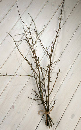 Bunch of natural fruit tree branches, ca.40cm