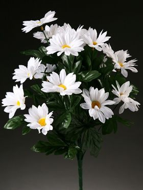 Bunch of white marguerites (30cm)