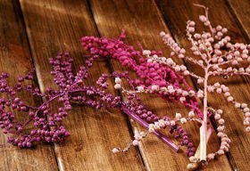 Canella twigs, 3 pcs/pkg, pink-purple