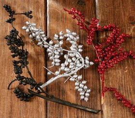 Canella twigs with fruits, 3 pcs/pkg, 20-30 cm, silver-claret-black
