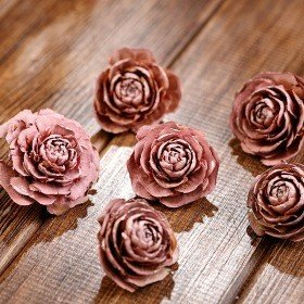 Cedar Wood Roses  6 pcs./pack Light Pink
