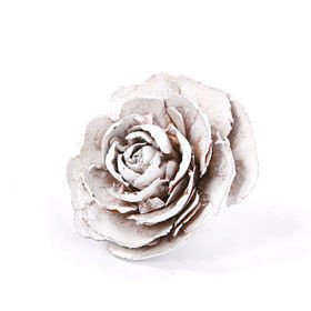 Cedar Wood Roses 6 pcs./pack bleached lacquered
