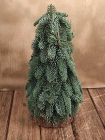 Christmas gift Norwegian Christmas tree 30 cm
