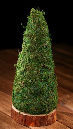 Christmas tree made of moss, wood slice 12/24 cm