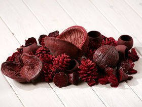 Claret set of dried plants