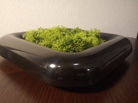 Composition vessel 23/23 cm with moss scratching (50g) - black