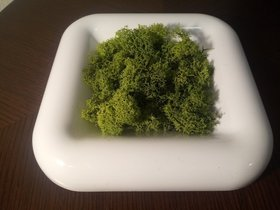 Composition vessel 23/23 cm with moss scratching (50g) - white