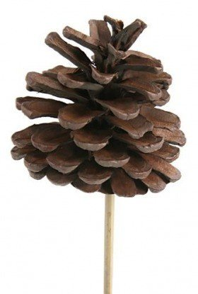 Cone on stick, 3pcs/pkg 7cm/50cm - chocolate