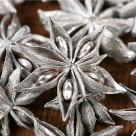 Decorative anise silver 12 stars