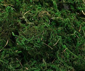 Decorative moss, green, big pack, 100g/pkg, ca. 2l