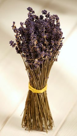 Dried lavender twigs bouquet 25 cm