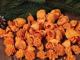 Dried salt flowers 30 pcs / pack - Orange