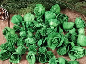Dried salt flowers 30 pcs / pack - green