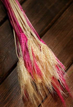 Duffed grain, 30-40 ears, ca. 40 cm, white-pink