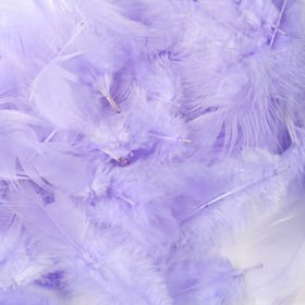 Feathers 10 g - sky-blue
