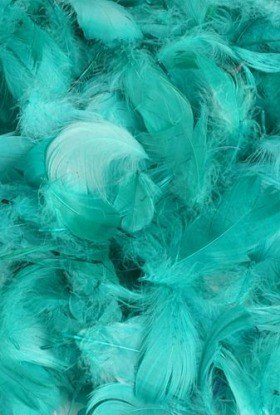 Feathers 10 g - turquoise