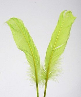 Feathers 19 cm 10 pcs/pkg - green