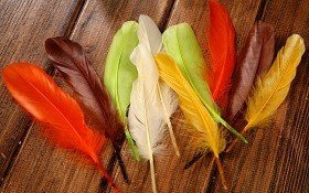 Feathers 19 cm 10 pcs/pkg - mix