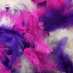 Feathers ca. 200 pcs - MIX 3