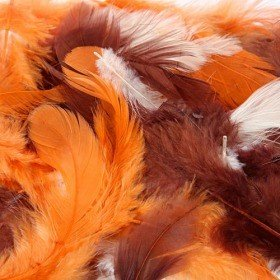 Feathers ca. 200 pcs - brown/orange/cream