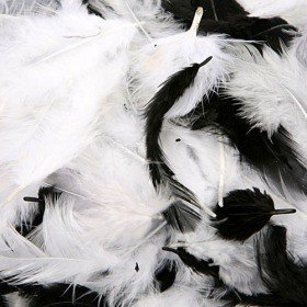 Feathers ca. 200 pcs - cream/pewter