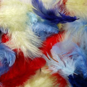 Feathers ca. 200 pcs - mix: Amazon