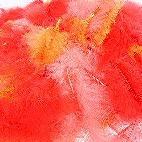 Feathers ca. 200 pcs - peach/orange/red