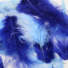 Feathers ca. 200 pcs - ultramarine/blue