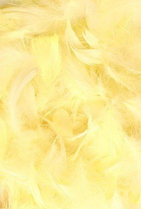 Feathers ca. 200 pcs - yellow