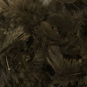 Feathers in box - black