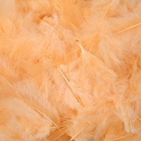 Feathers in box ca. 200 pcs/pkg - peach