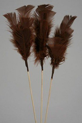 Feathers on stick (3 pcs) 34 cm, brown