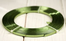 Flat aluminum ring 100 g -GREEN