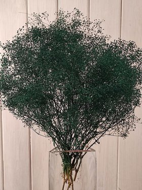 Gypsophila bouquet GREEN about 30 cm