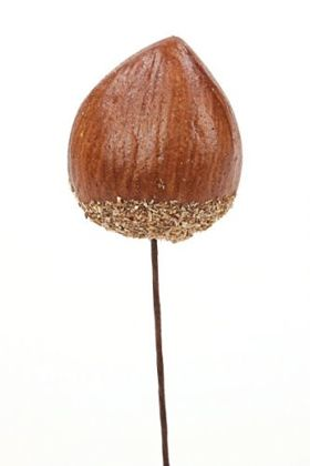 Hazelnut on wire 24 pcs/pkg